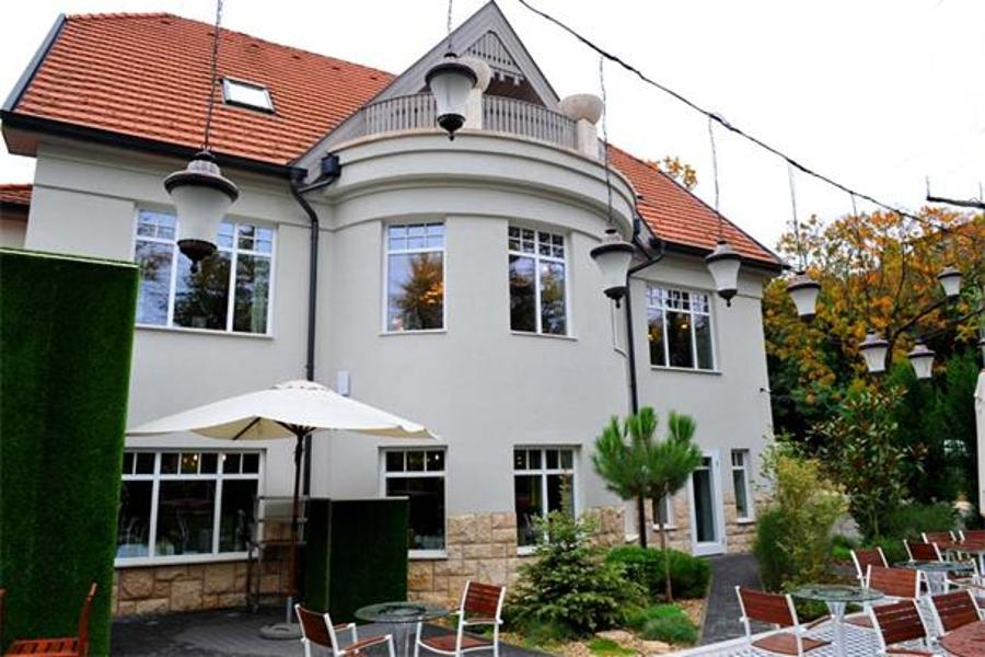 Émile: A Culinary Gem In The Buda Hills