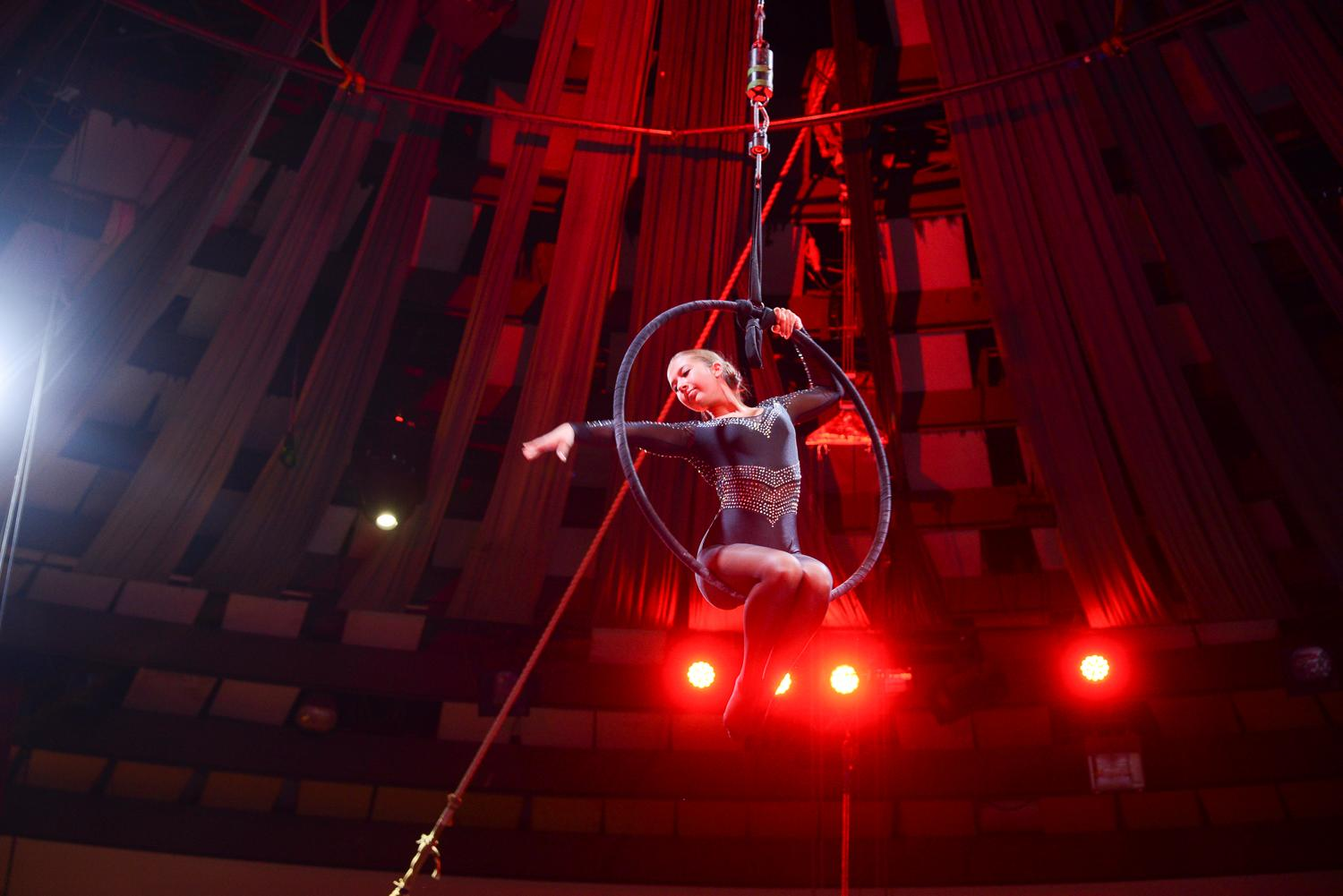 Video: 'Mattie The Goose-Boy', Budapest Circus, Now On Until 22 January