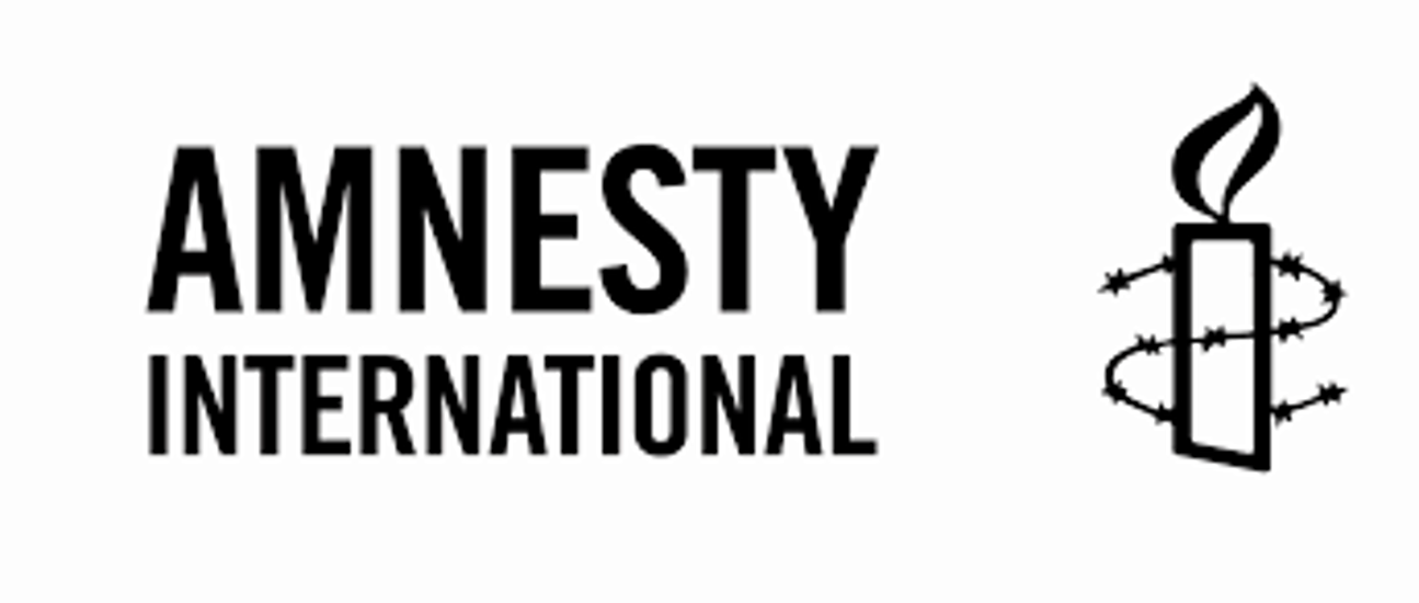 Amnesty Criticises Hungary For Emergency Measures