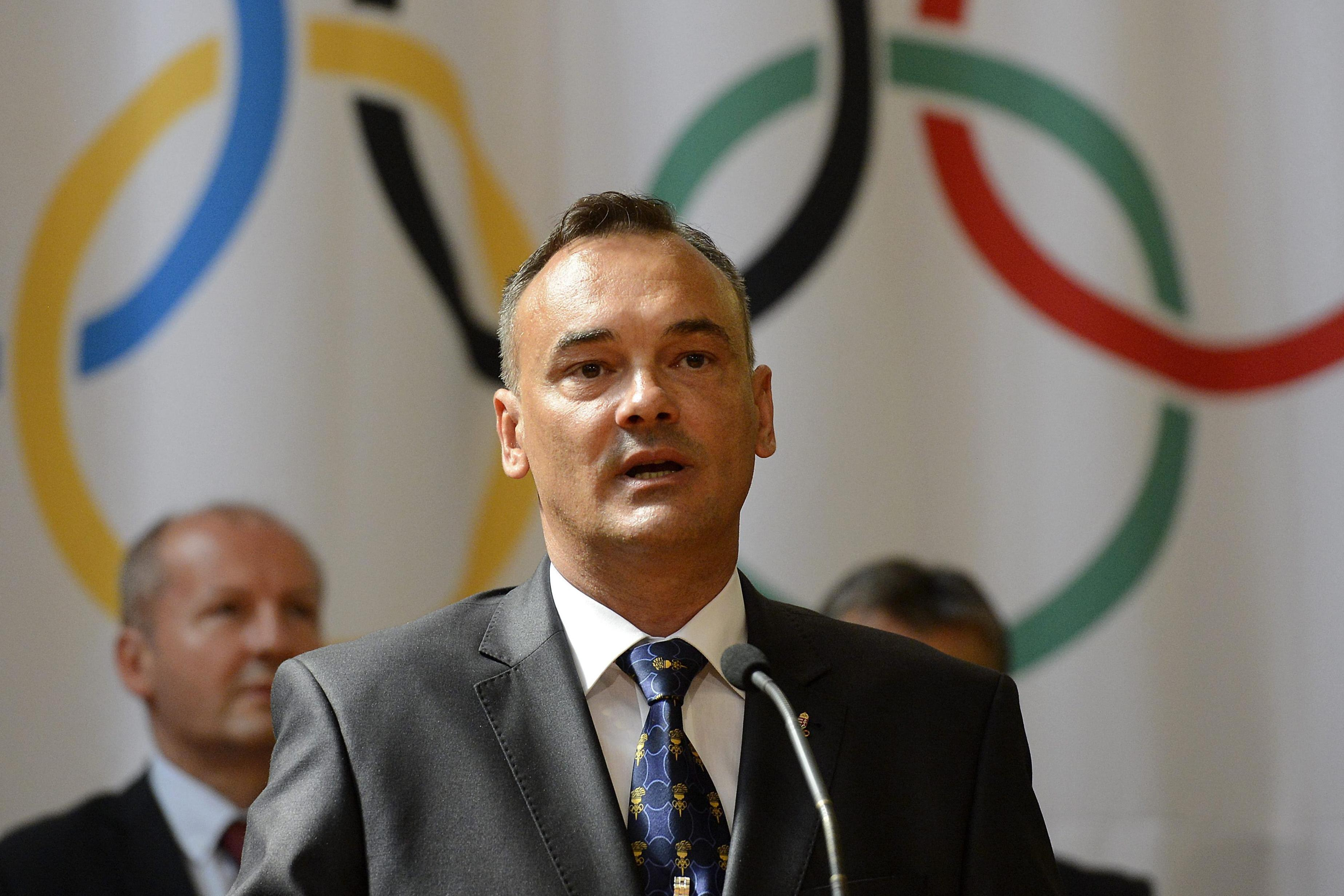 Comments On Olympic Referendum Initiative