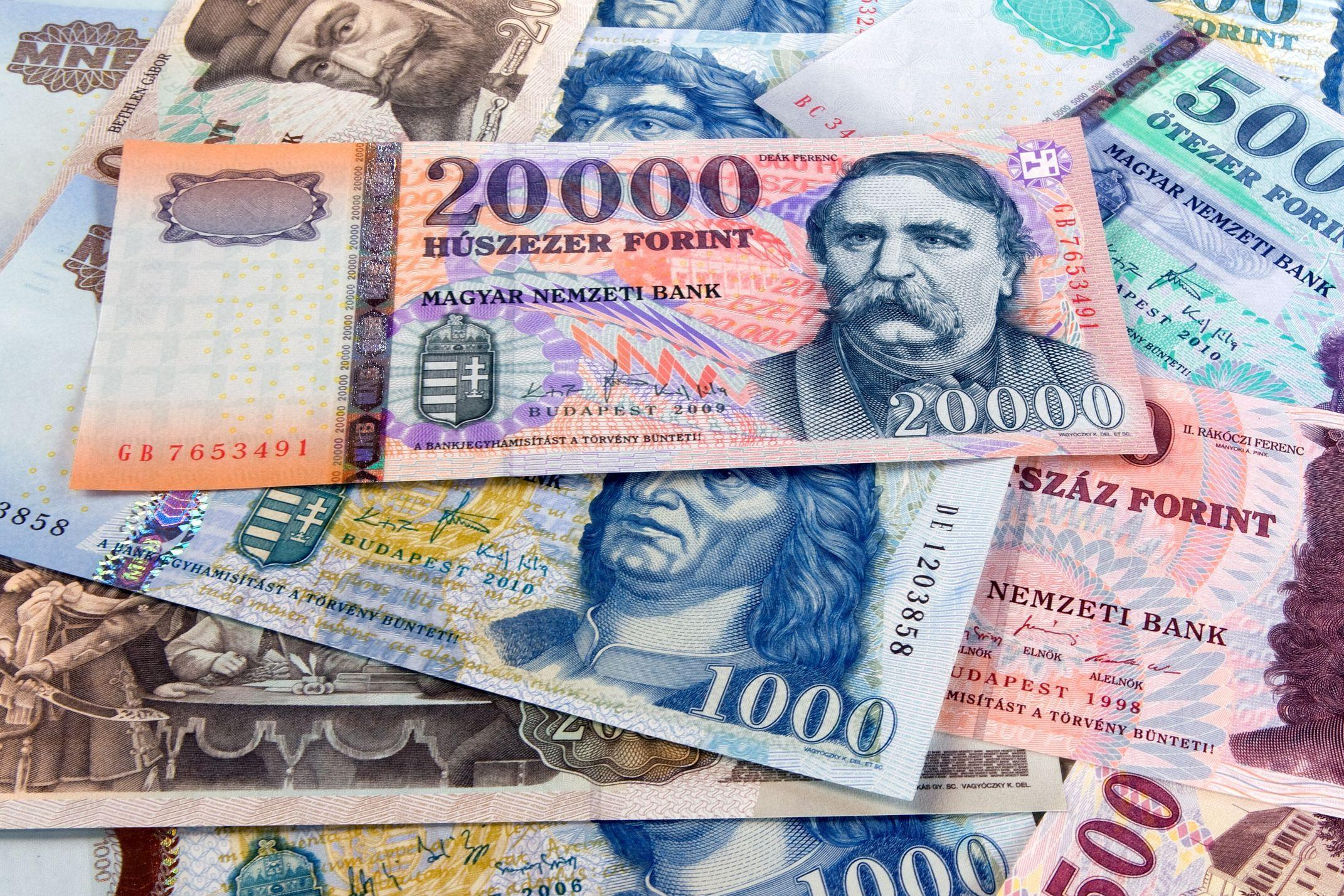 Hungary's Budget Posts EUR 400m Surplus In January
