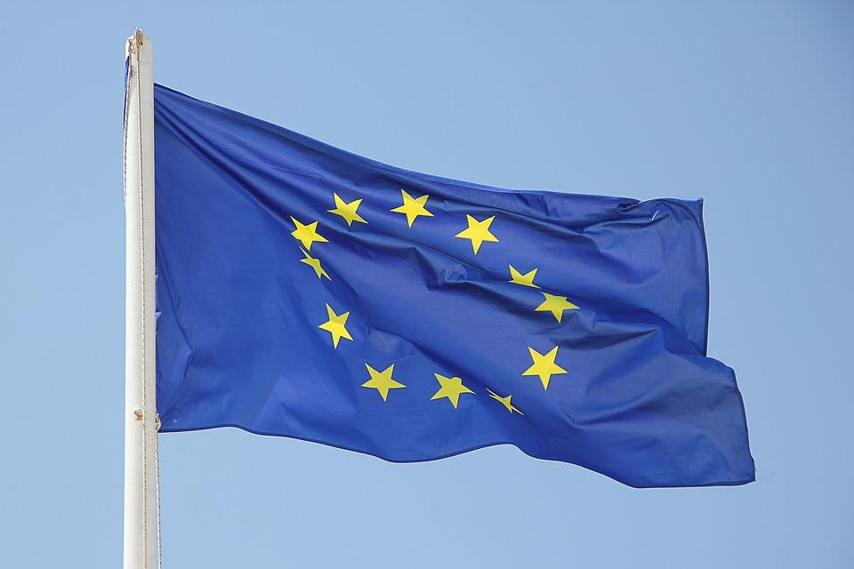 Liberals Call For EU Flag To Be Displayed On Parliament