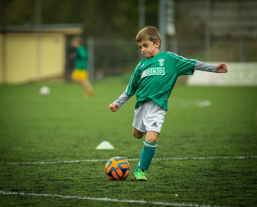 Hungarian Football Federation: Football Development Must Continue