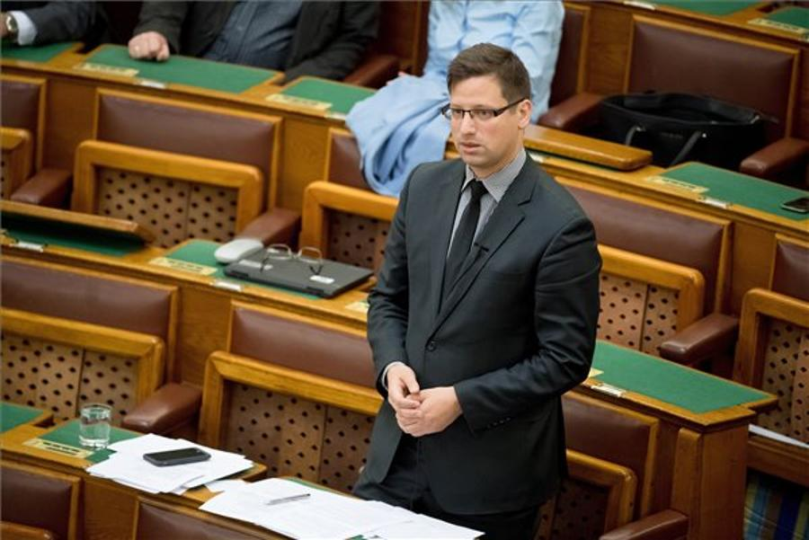 Fidesz MP: No Chance Of Referendums Until After 2018 Election