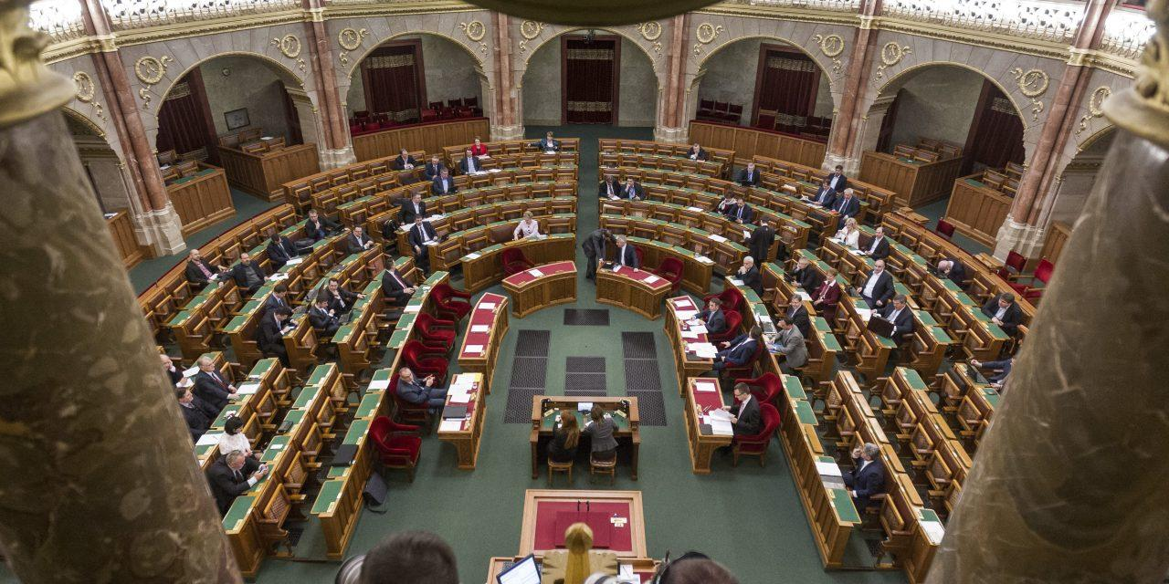 Local Opinion: Parliament Passes NGO Law
