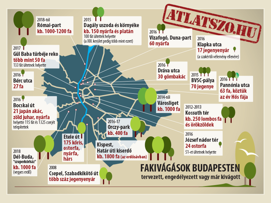 Thousands Of Trees Cut And Left To Die In Budapest