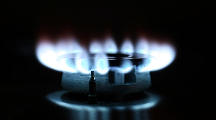 Hungarian Deputy House Speaker Calls For Diversification Of Gas Imports