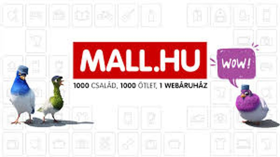Mall.hu Services Suspended After NAV Raid