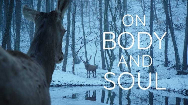 On Body And Soul Shortlisted For Oscar 2018