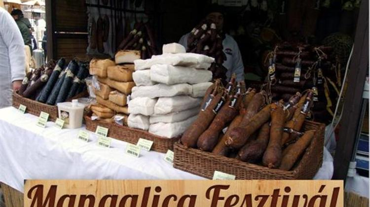 Video: Mangalica Festival In Budapest, 9 - 11 February